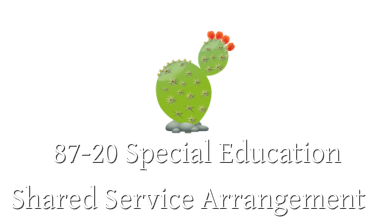 87-20 Special Education Shared Service Arrangement